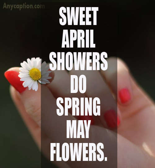 Spring-captions-for-springtime-photos