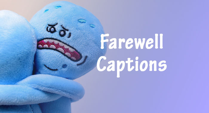 Farewell Captions - Best Captions To Say Goodbye | AnyCaption