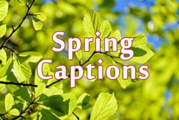 spring captions