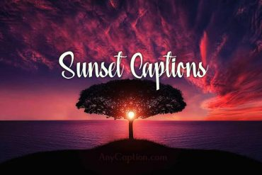 Sunset Captions and Clever Puns for Sunset Pictures