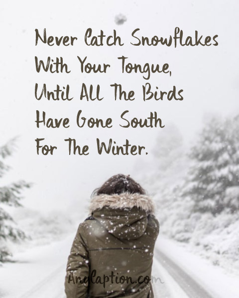 Winter Captions & Snow Puns for Your Winter Selfies | AnyCaption