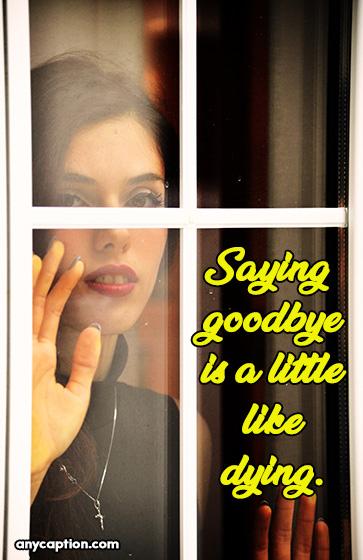Saying goodbye is a little like dying Goodbye Captions