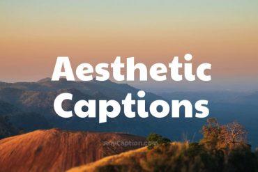 Aesthetic-Captions